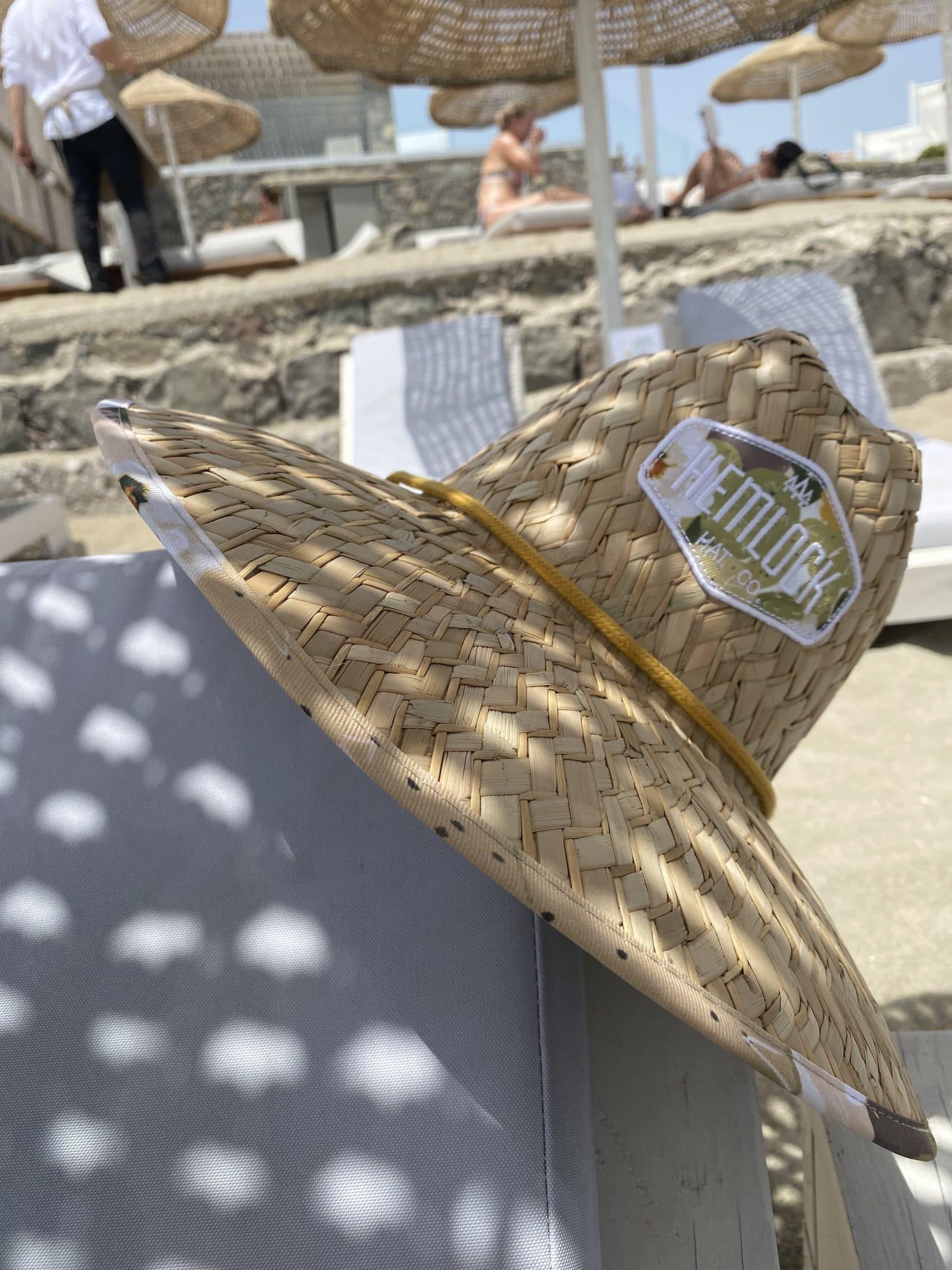 hemlock hat succulent